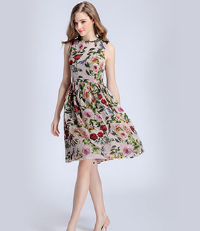 Clothing - Rose printed organza dress